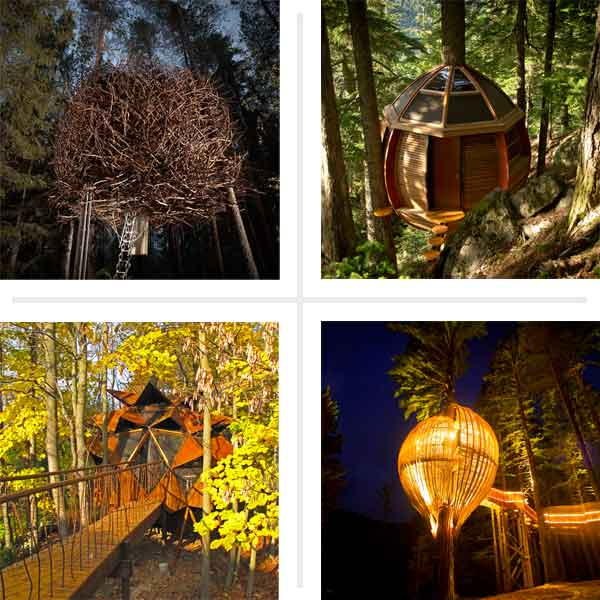 18 проектов Splendid Treehouse